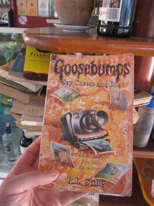 Sorry for the spoilers, but if I remember this correctly, in this book its bad to get your picture taken with the camera the boys find in the old Coffman house….