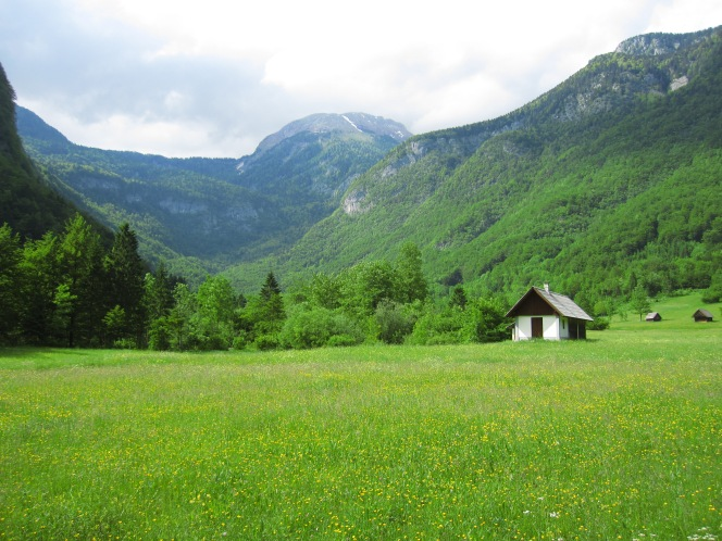 Bohinj – A review of Slovenia's only national park (Triglav) and tallest waterfall (Savica)