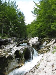 Mostnice Gorge 2